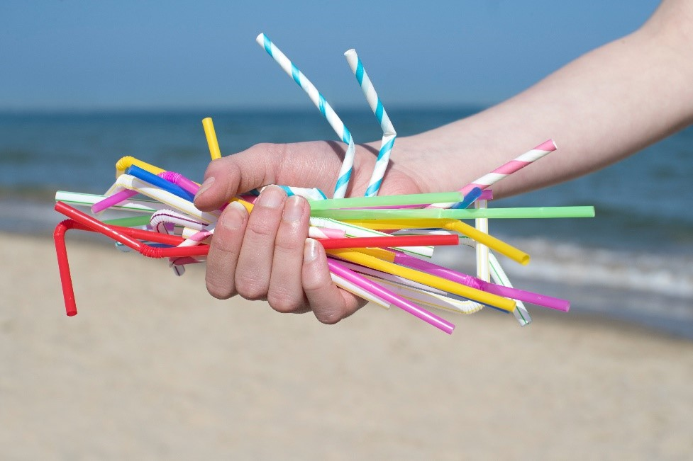 hand holding straws at the beach